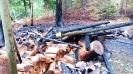 Waldbrand Unterstand Sertel Reiden 29.04.2018_1