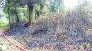 Waldbrand Unterstand Sertel Reiden 29.04.2018
