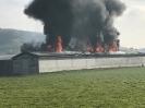 16.11.2019,_Feuerwehreinsatz Brand, Dagmersellen_6