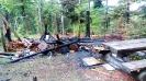 Waldbrand Unterstand Sertel Reiden 29.04.2018_2