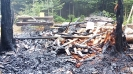 Waldbrand Unterstand Sertel Reiden 29.04.2018_5