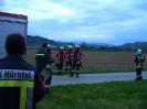 Atemschutz Einsatzübung 01.05.2012_13