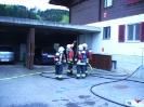 Atemschutz Einsatzübung 01.05.2012_5